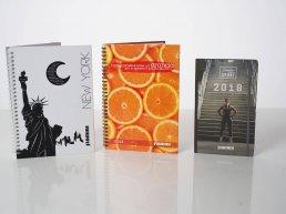 stampa cataloghi dapliant brochure